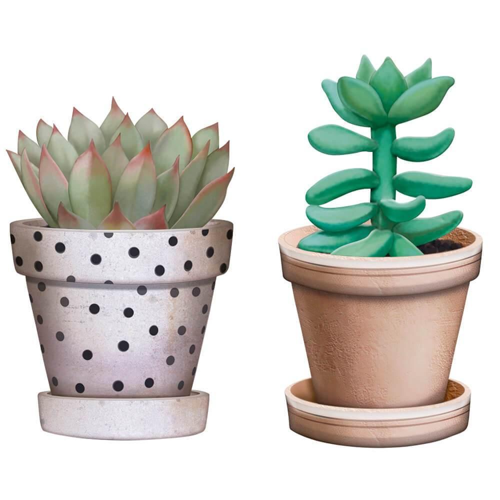 Cactus Succulent : Wood Ornament Embellishment Crafts Hobby Scrap Shape Laser