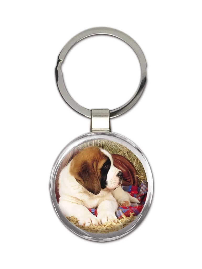 Saint Bernard Hay : Gift Keychain Dog Puppy Pet Farm Animal Cute