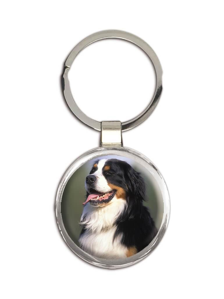 Bernese : Gift Keychain Dog Pet Puppy Animal Cute Canine Pets Dogs