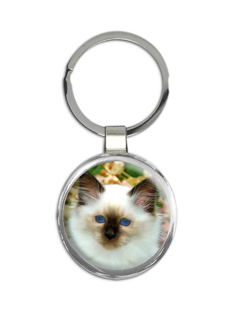Cat : Gift Keychain Cute Animal Kitten Funny Friend Pet Feline Pets Lover Cat Mom Dad