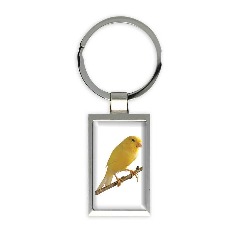 Canary : Gift Keychain Bird Exotic Animal Nature Fauna Ecology Aviary
