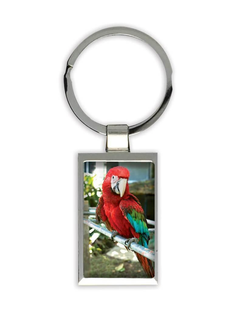 Macaw : Gift Keychain Parrot Bird Animal Cute Ecology Nature Aviary