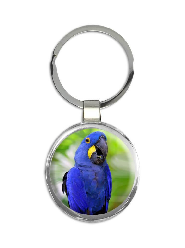 Blue Macaw : Gift Keychain Parrot Bird Animal Cute Mexico Costa Rica