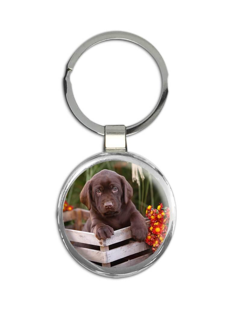 Labrador Wood Crate : Gift Keychain Dog Puppy Pet Animal Cute