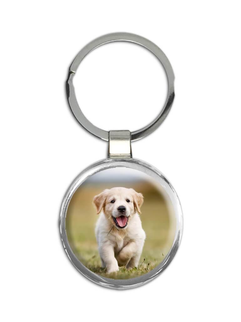 Golden Retriever Running : Gift Keychain Dog Pet Animal Puppy