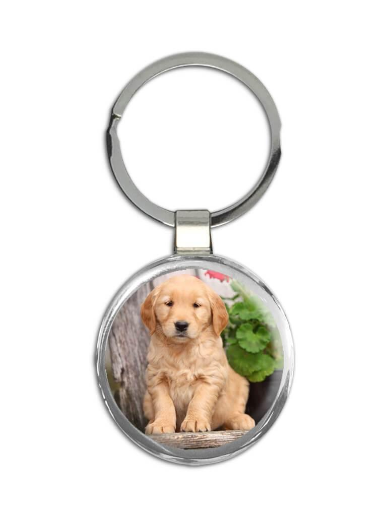 Golden Retriever : Gift Keychain Pet Animal Puppy Dog Canine Pets Dogs