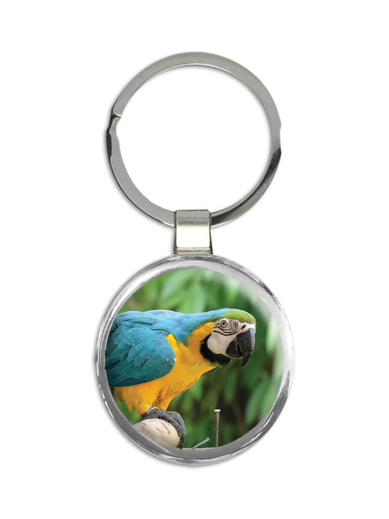 Macaw : Gift Keychain Bird Parrot Nature Tropical Brazil Mexico Rica Florida