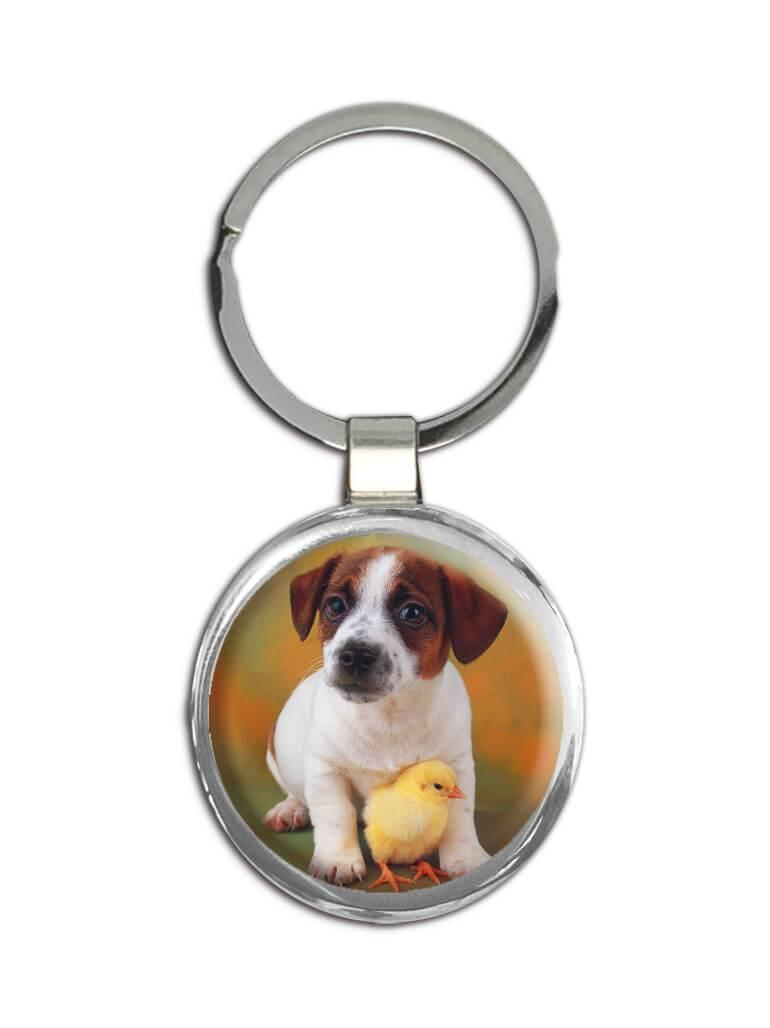 Jack Russell Terrier With Chick : Gift Keychain Dog Pet Puppy Animal Cute