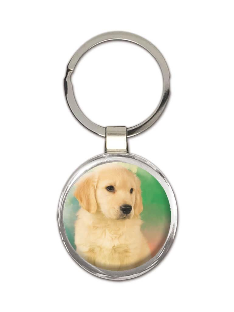 Golden Retriever : Gift Keychain Dog Pet Animal Puppy Canine Pets Dogs