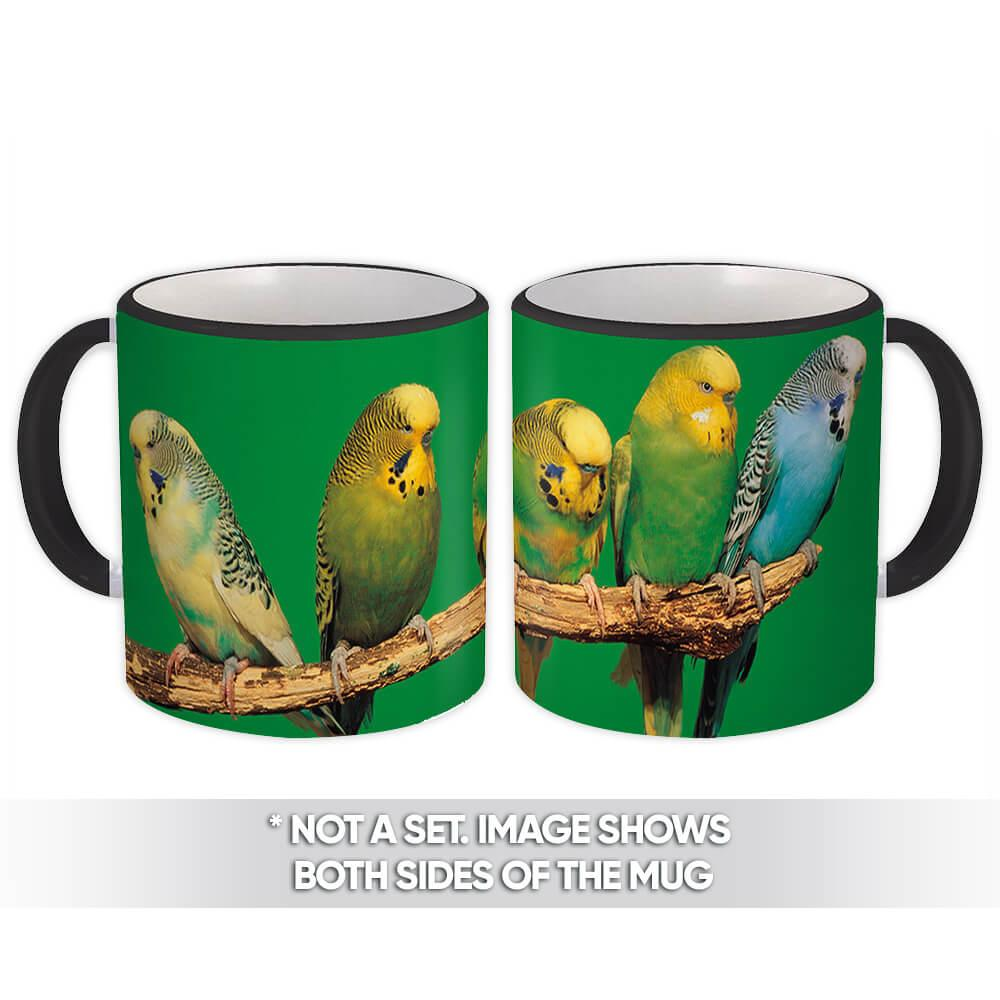 Life is Better With Parakeets : Gift Mug Bird Nature Animals Watchers Friend Colorful