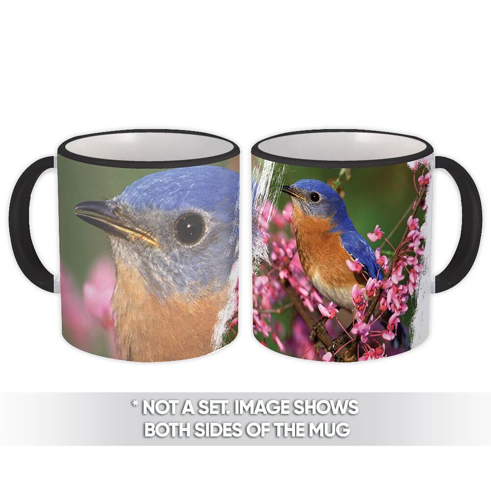 Easterm BlueBird : Gift Mug Bird Watcher Nature Animal Ecology Nature Aviary