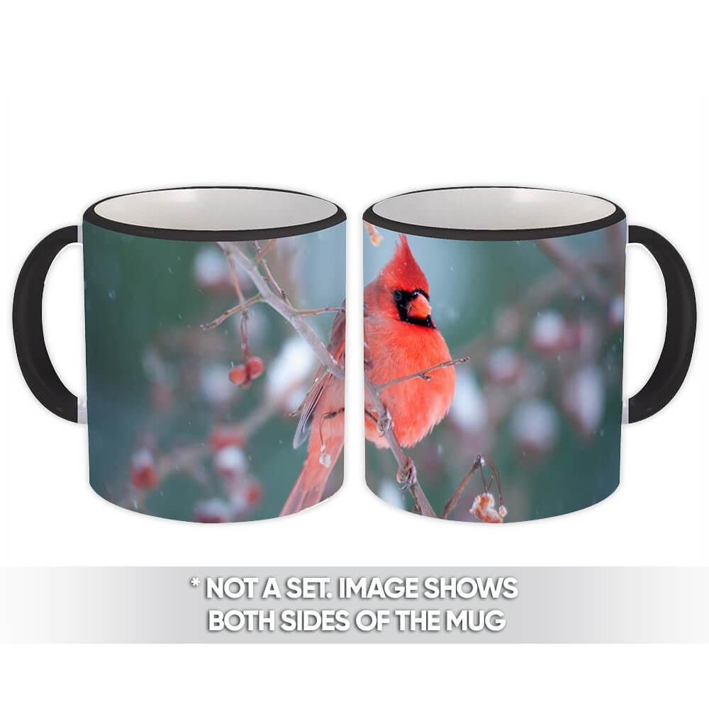 Cardinal : Gift Mug Bird Nature Animal Christmas Watching Winter
