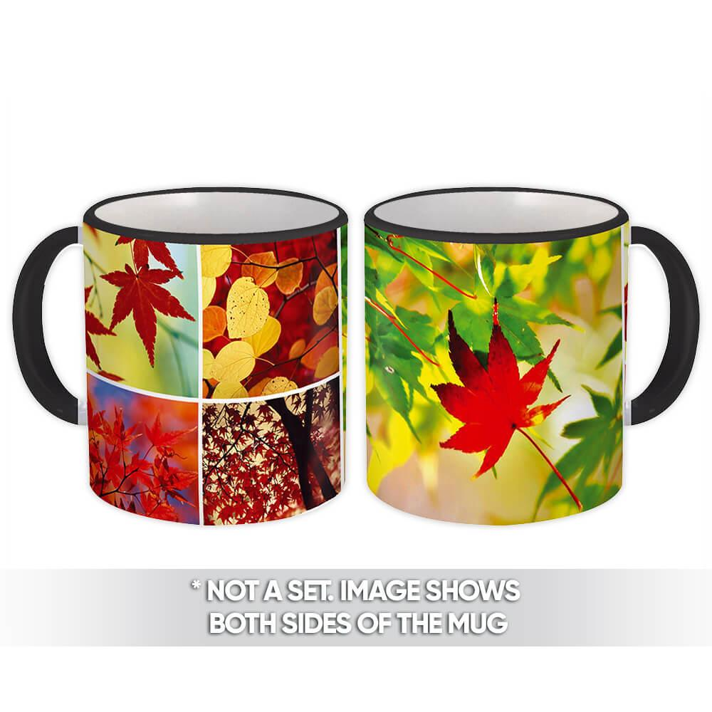 Maple Tree : Gift Mug Leaves Birch Autumn Thanksgiving Photo Pattern Sunny Plants