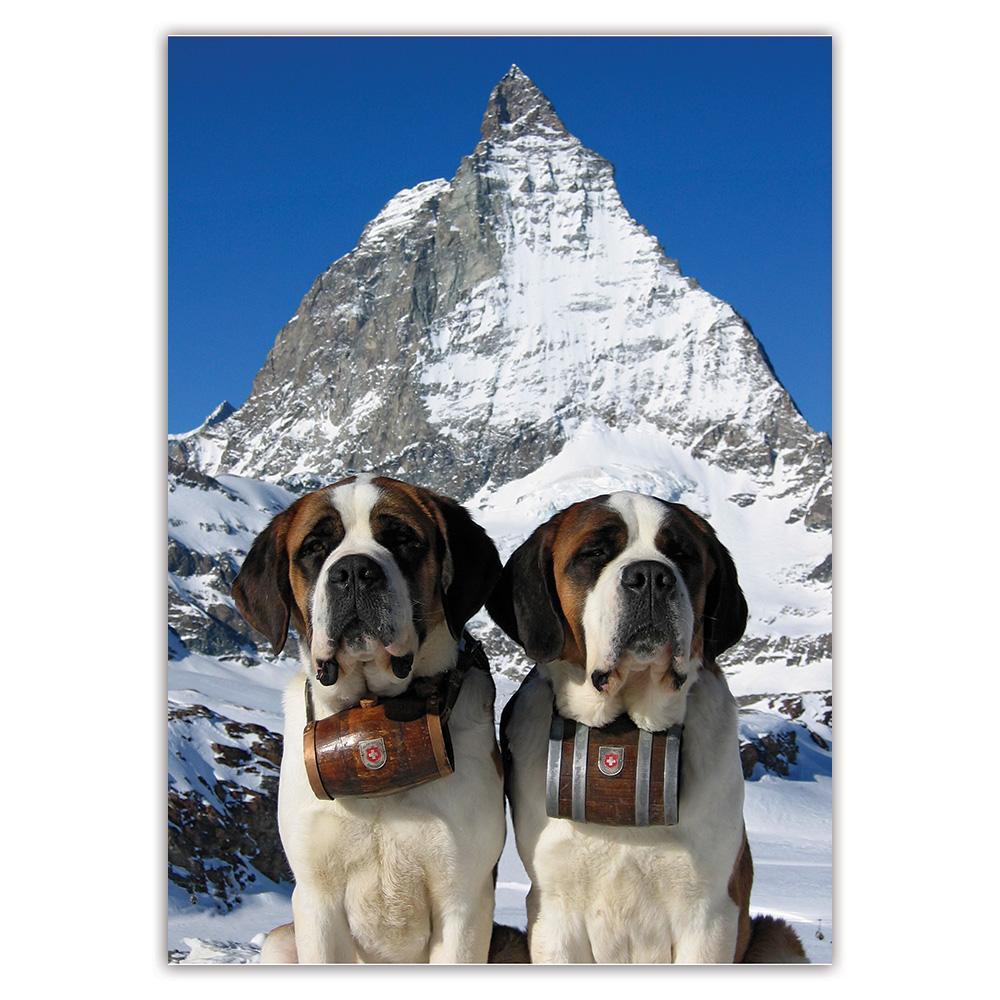 Saint Bernard Mountain : Gift Sticker Dog Puppy Pet Snow Winter Animal Cute