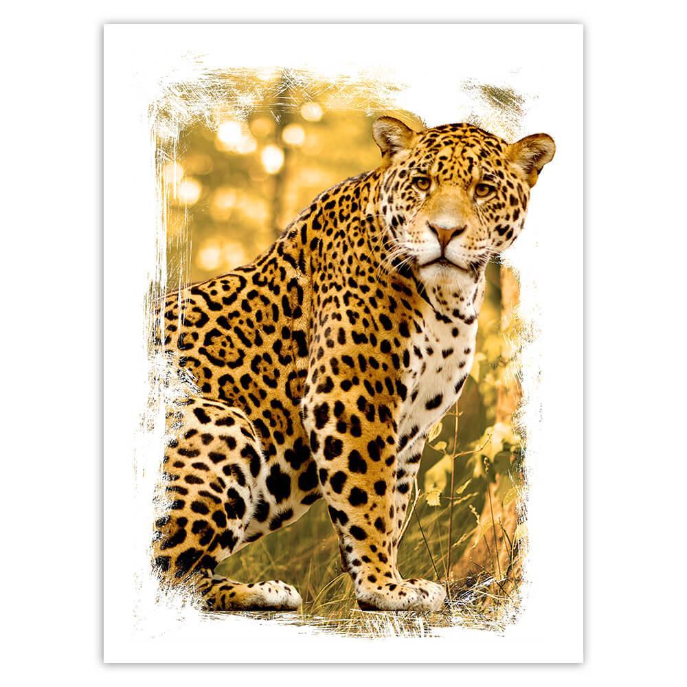 Cheetah : Gift Sticker Wild Animals Wildlife Fauna Safari Nature