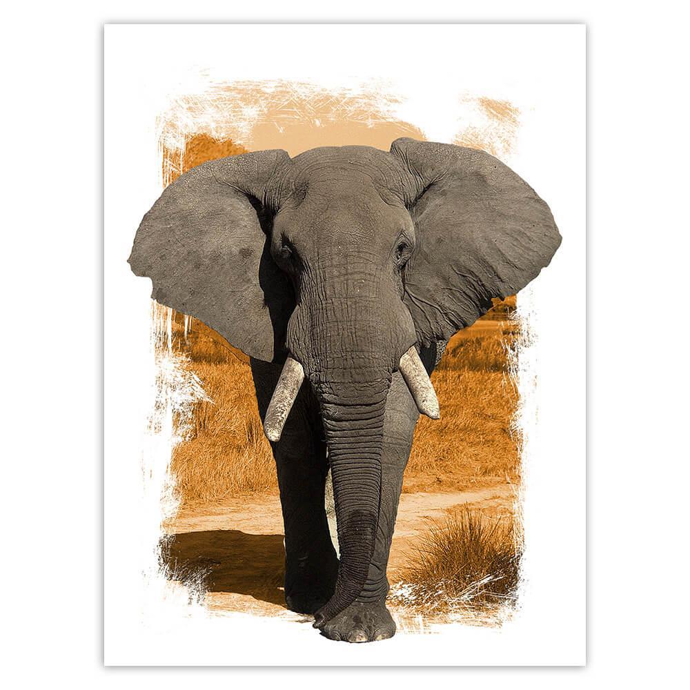 Elephant : Gift Sticker Wild Animals Wildlife Fauna Safari Nature