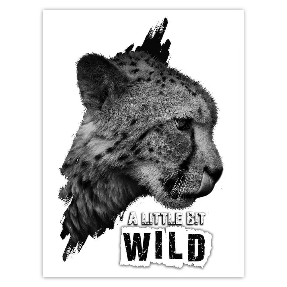 Cheetah Nature : Gift Sticker Wild Animals Wildlife Fauna Safari Species