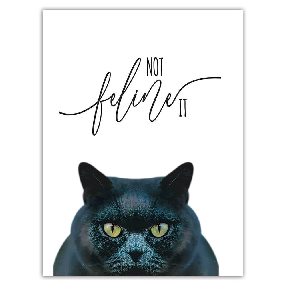 Funny Black Cat : Gift Sticker Not Feeling It Feline Animal Kitten