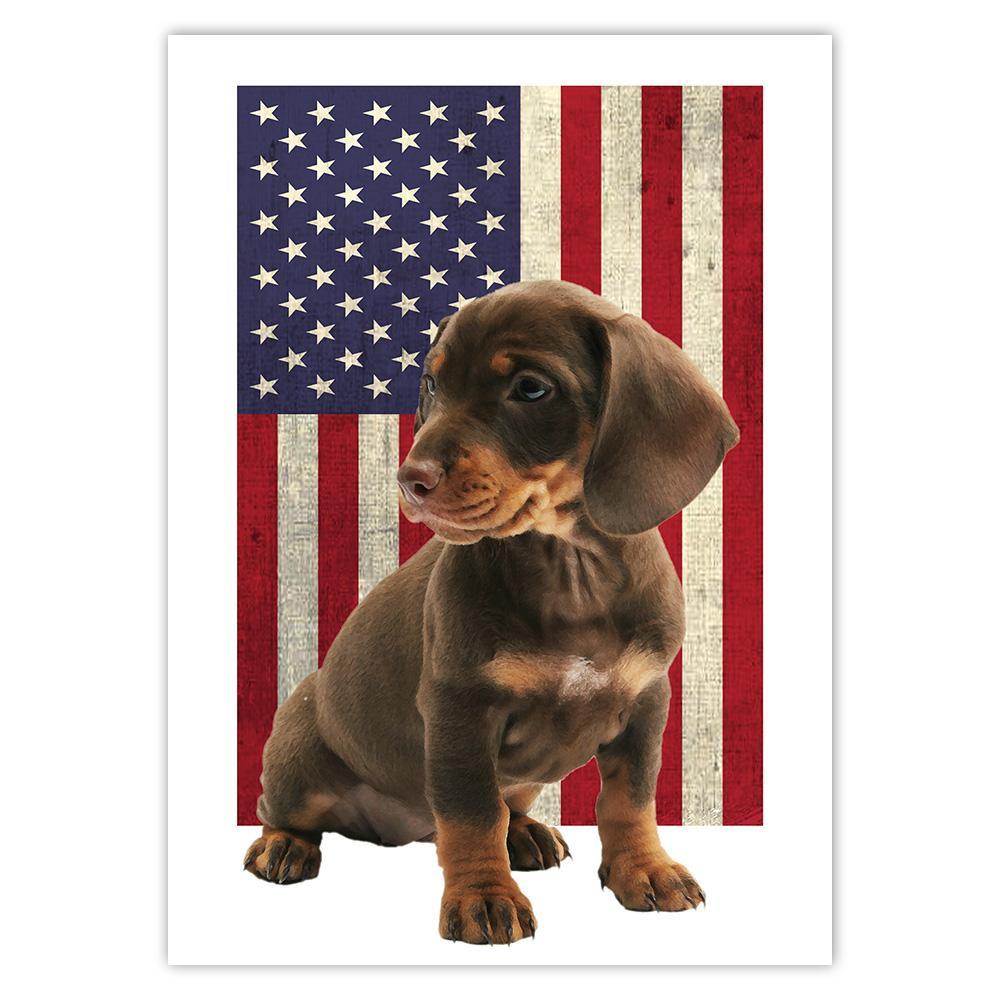 Dachshund USA Flag : Gift Sticker Dog Weenie Animal Pet Canine Pets Dogs